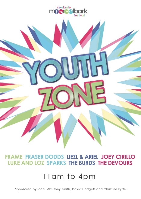 Poster for Youth Zone 2016